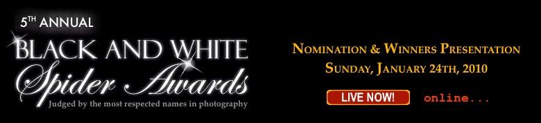 The International 5th Annual Black&White Spired Awards competition, awards, kasia kalua krynska, winner, still life