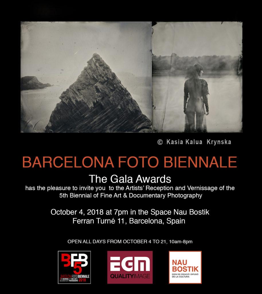 biennial barcelona krynska